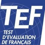 TEF-logo-francais