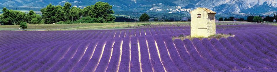 Frankrijk-Provence