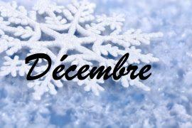 niewsbrief-december-2017